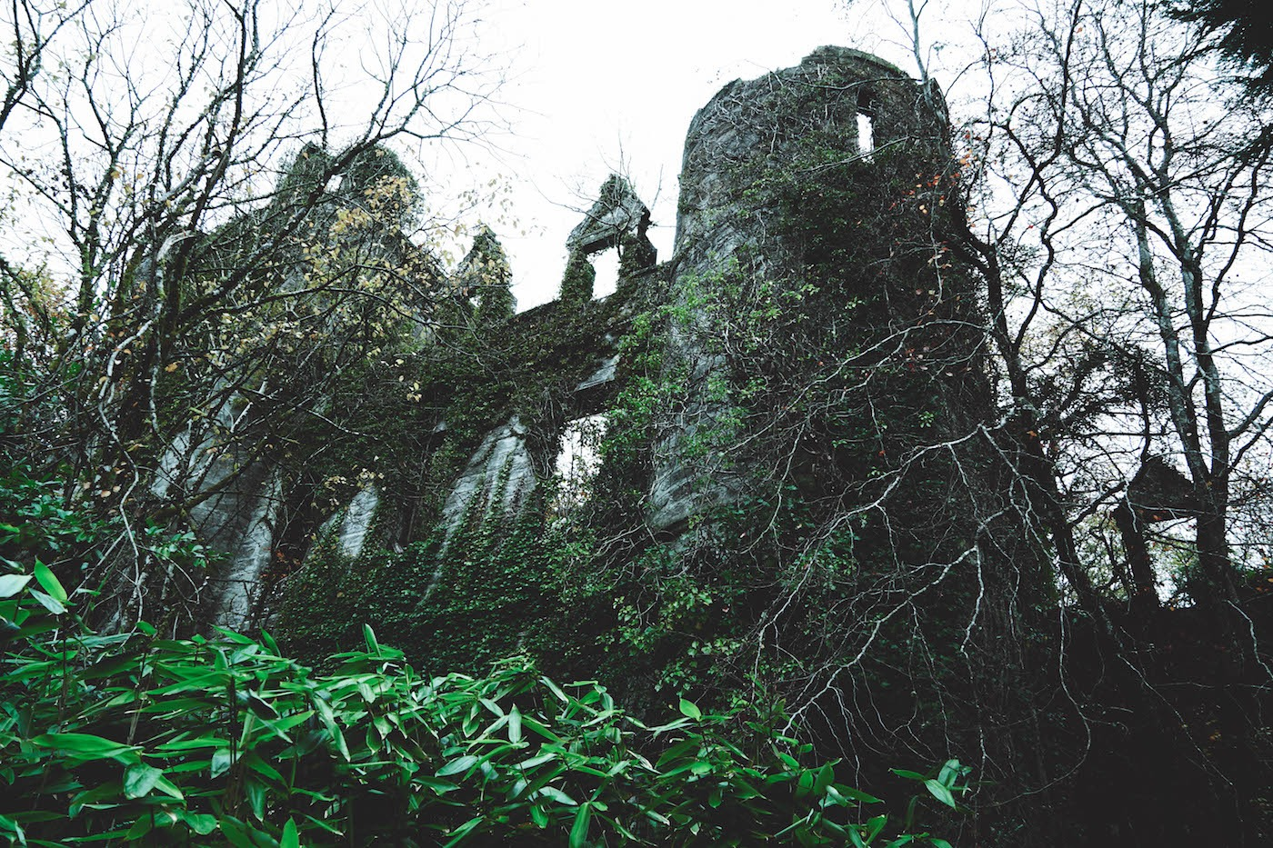 Exploring The Spooky - And Abandoned - Buchanan Castle In Scotland